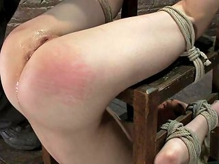 19yr Old Lily Labeau Looks Like That Gossip Girl Blond Anally Fucked Made To Cum Over And Over Hogtied Txxx Com