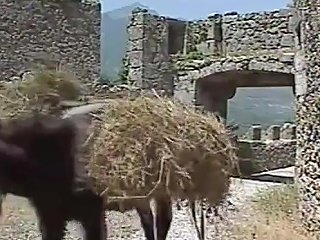 Classic Porn Italian Movies Txxx Com