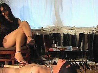 Shoe Worship Cbt Free Slave Hd Porn Video 56 Xhamster