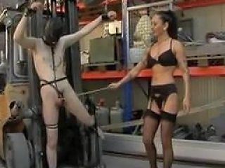 New Guy Cbt Initiation By Hired Dom Free Porn E9 Xhamster