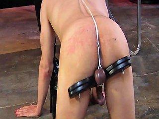 Cybill Troy Strap On Cbt Free Severe Sex Films Hd Porn 1d