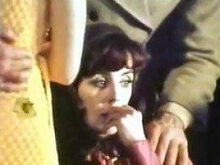 The Erotic Artist 1971 Txxx Com