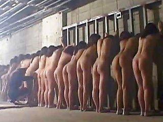 Asian Prison Strip Striptease Porn Video Bc Xhamster