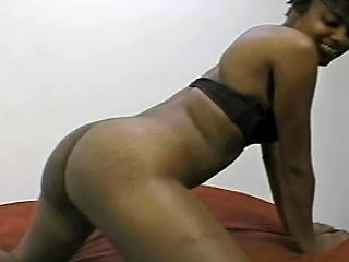 Welcome To The Jungle Free Whores Porn Video 0b Xhamster