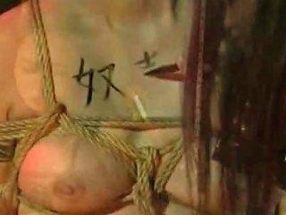 Asian Lesbian Shibari Bondage Free Asian Lesbian Bondage Porn Video